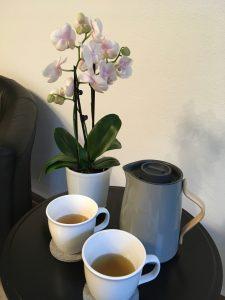 Patientengespräch mit Tee zum Wohlfühlen